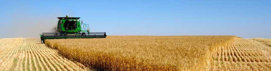 Применение  в сельском хозяйстве